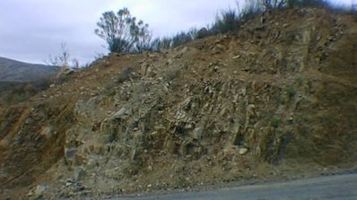 Roadcut Exposure of Dike